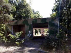 drewnica3